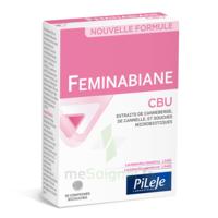 Pileje Feminabiane Cbu 30 Comprimés Bicouches à ERSTEIN
