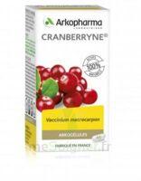 Arkogélules Cranberryne Gélules Fl/150 à ERSTEIN