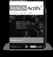 Synactifs Magnactifs Gélules B/60 à ERSTEIN