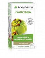 Arkogélules Garcinia Gélules Fl/45 à ERSTEIN