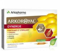Arkoroyal Dynergie Ginseng Gelée Royale Propolis Solution Buvable 20 Ampoules/10ml à ERSTEIN