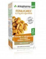 Arkogélules Fenugrec Bio Gélules Fl/40 à ERSTEIN