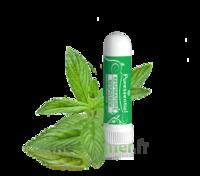 Puressentiel Respiratoire Inhaleur Respiratoire Aux 19 Huiles Essentielles - 1 Ml à ERSTEIN