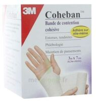 Coheban, Blanc 3 M X 7 Cm à ERSTEIN