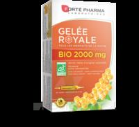 Forte Pharma Gelée Royale Bio 2000 Mg Solution Buvable 20 Ampoules/15ml à ERSTEIN