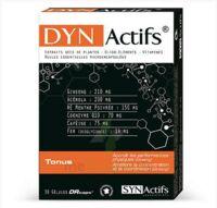 Synactifs Dynactifs Gélules B/30 à ERSTEIN