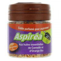 Aspiréa Grain Pour Aspirateur Cannelle Orange Huile Essentielle Bio 60g à ERSTEIN
