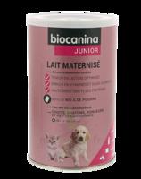Biocanina Lait Poudre Maternisé B/400g à ERSTEIN