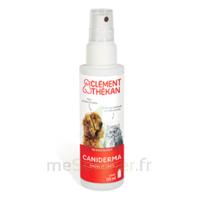 Clément Thékan Caniderma Solution Externe Cicatrisant Spray/125ml à ERSTEIN