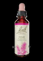 Fleurs De Bach® Original Pine - 20 Ml à ERSTEIN