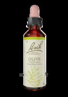 Fleurs De Bach® Original Olive - 20 Ml à ERSTEIN