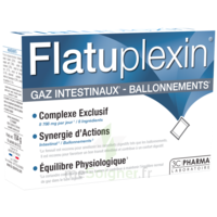 Flatuplexin Poudre Solution Buvable Gaz Intestinaux Ballonnements 16 Sachets à ERSTEIN