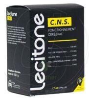 Lecitone C.n.s Caps B/60 à ERSTEIN